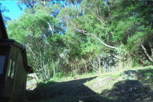 NSW Rural Fire Service – Hazard Reduction Notice – Saratoga NSW